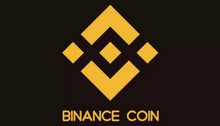 BNB Binance Coin coin